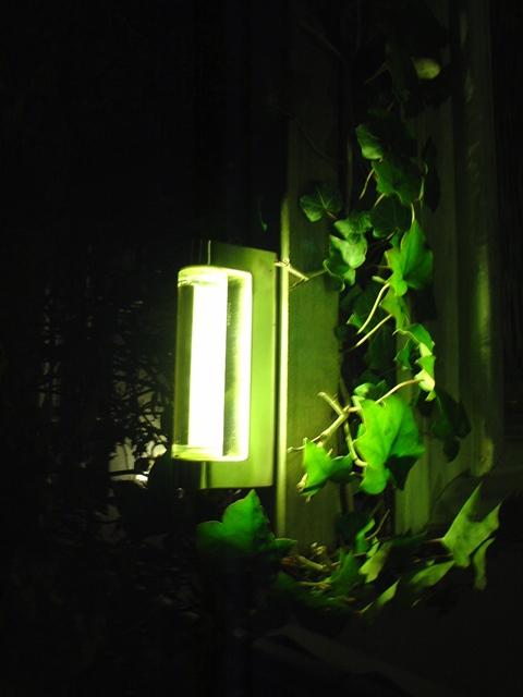 Verlichting - Hagmole of Ten Have Hoveniersbedrijf